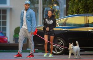 Chris Brown y Karrueche regresan
