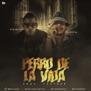 Yemil ft Boza – Perro De La Vida