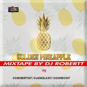 Golden Pineapple by Dj Robertt507